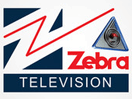 zebra tv uy